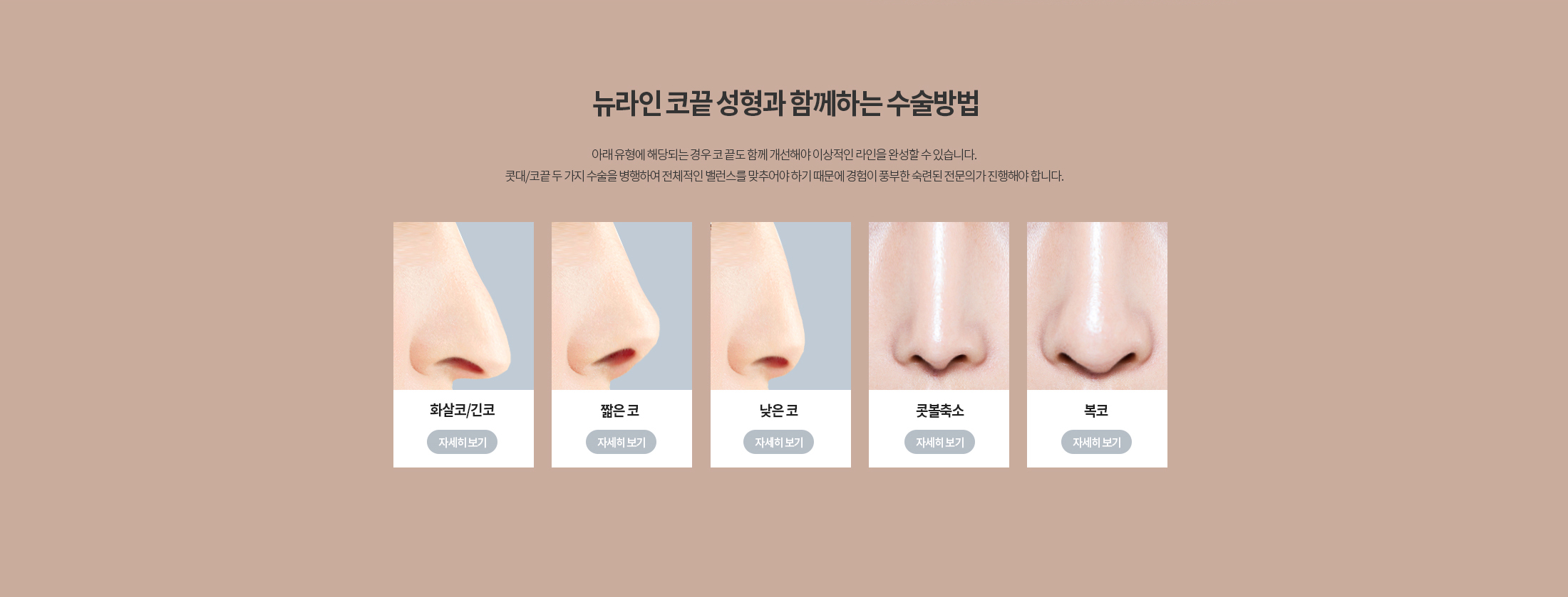 코끝 성형
